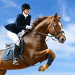 Regent Insurance for Horse and Rider
